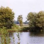 Blick auf den Teich 1