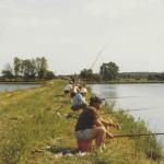 Die Viehdammteiche im Jahr '84